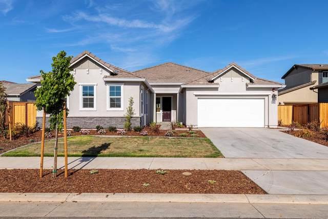 10431 Arnado Street, Elk Grove, CA 95757 (MLS #221051473) :: Deb Brittan Team