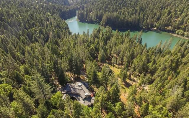 10880 Mill Springs Drive, Nevada City, CA 95959 (MLS #221051658) :: CARLILE Realty & Lending