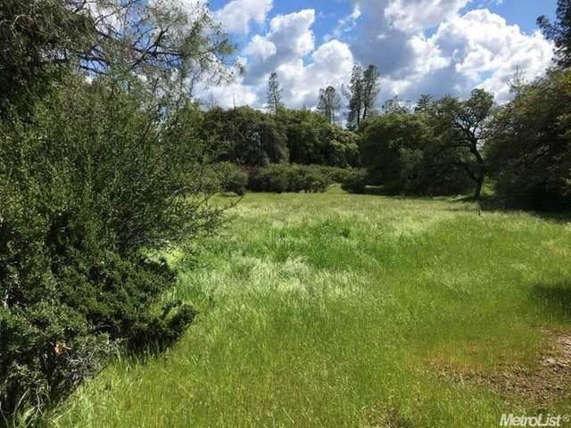 3800 Paloma Road, Camino, CA 95709 (MLS #221052256) :: The MacDonald Group at PMZ Real Estate