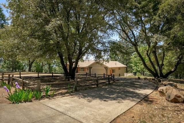 4920 Escondito Court, Camino, CA 95709 (MLS #221052490) :: CARLILE Realty & Lending