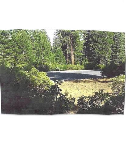 166 Fox Pine Drive, Lake Almanor, CA 96137 (MLS #221052681) :: The Merlino Home Team