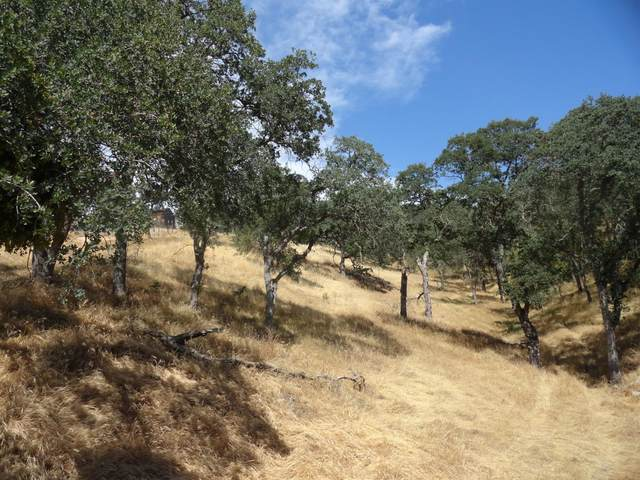 5533 Treosti Pl, Valley Springs, CA 95252 (MLS #221052937) :: CARLILE Realty & Lending