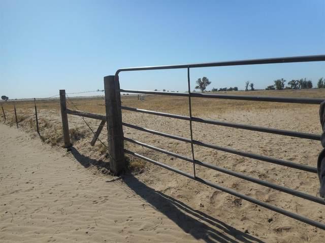0 Van Clief Road, Stevinson, CA 95374 (MLS #221053344) :: 3 Step Realty Group