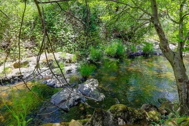 18981 River Crest Court, Grass Valley, CA 95949 (MLS #221054580) :: Deb Brittan Team