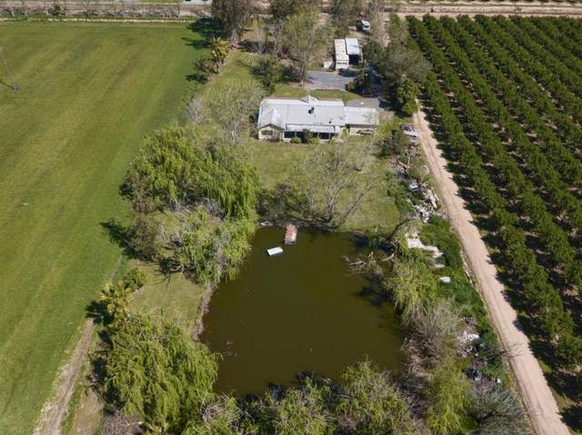25280 Dodds Road, Escalon, CA 95320 (MLS #221055005) :: 3 Step Realty Group