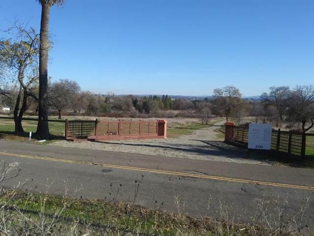 3131 W Delmar Avenue, Loomis, CA 95650 (MLS #221056000) :: Laura Eklund | Realty One Group Complete