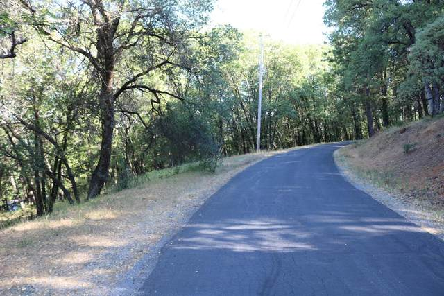 16866 Meyer Lane, Grass Valley, CA 95949 (MLS #221056073) :: 3 Step Realty Group