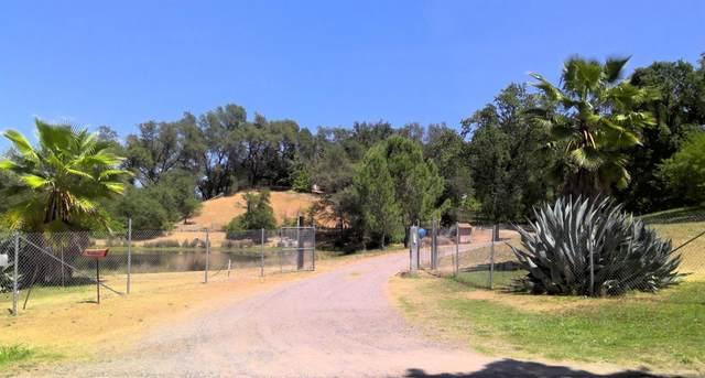 3362 Garden Bar Road, Lincoln, CA 95648 (MLS #221056211) :: Live Play Real Estate   Sacramento