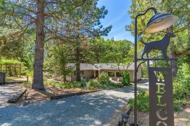 11611 Tabeaud Road, Pine Grove, CA 95665 (MLS #221056672) :: Live Play Real Estate   Sacramento