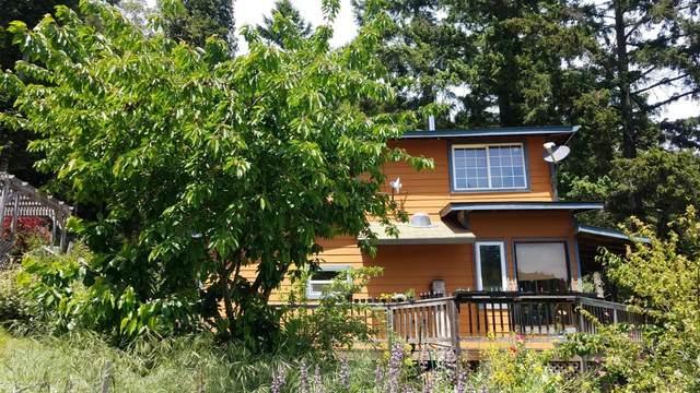 5500 Rancho Sequoia Drive, Alderpoint, CA 95511 (MLS #221056954) :: Live Play Real Estate   Sacramento