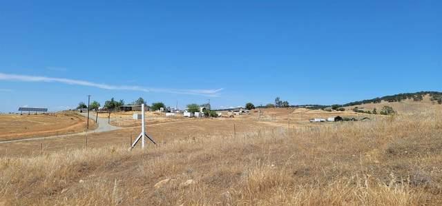4101 Kapaka Lane, Wheatland, CA 95692 (MLS #221057126) :: 3 Step Realty Group
