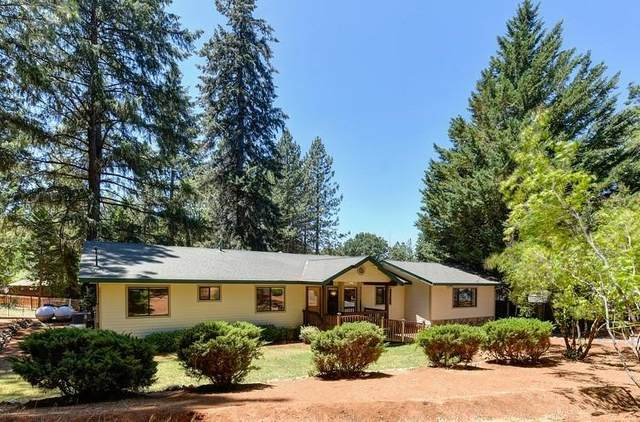 5584 Happy Pines Court, Foresthill, CA 95631 (MLS #221057979) :: Heather Barrios