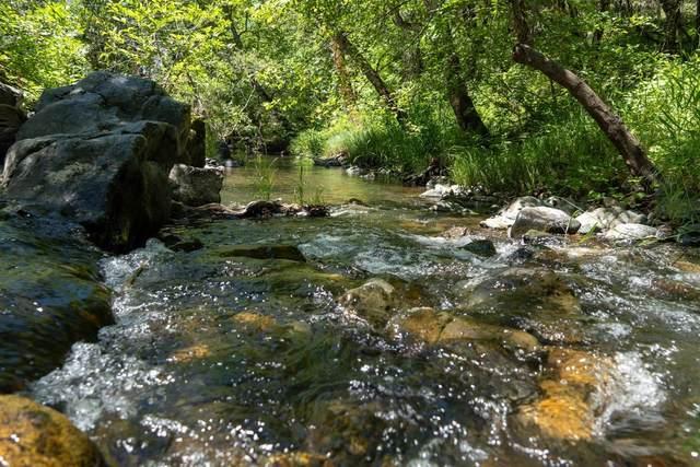 17404 Winding Oaks, Grass Valley, CA 95949 (#221058809) :: Rapisarda Real Estate