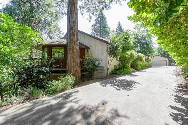 11674 Northview Drive, Nevada City, CA 95959 (MLS #221059359) :: 3 Step Realty Group