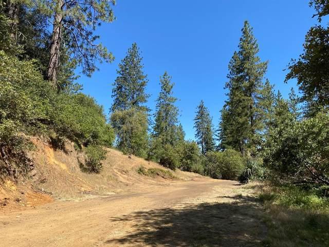 22420 Gunsight Road, Sonora, CA 95370 (MLS #221059494) :: Keller Williams Realty