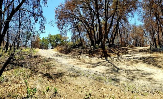 39 Sarah Lane, Berry Creek, CA 95916 (MLS #221060156) :: 3 Step Realty Group