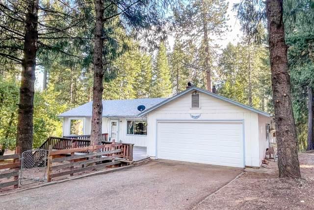 27034 Antelope Drive, Pioneer, CA 95666 (MLS #221060315) :: Heather Barrios