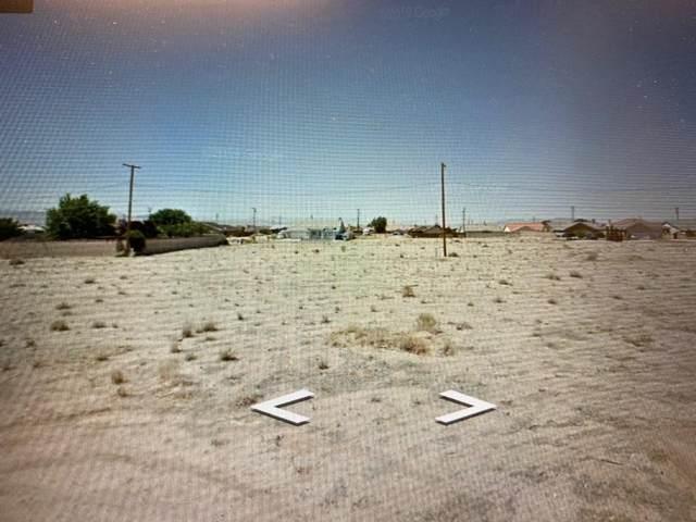 0 Karen Avenue, Outside California, CA 93505 (MLS #221060621) :: Keller Williams - The Rachel Adams Lee Group