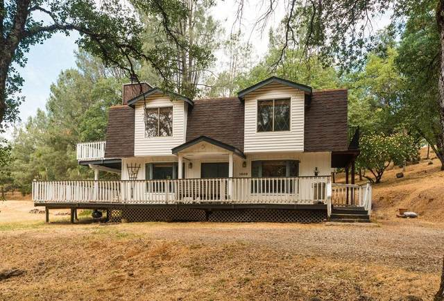 1050 Dallimore Road, Colfax, CA 95713 (MLS #221062783) :: 3 Step Realty Group