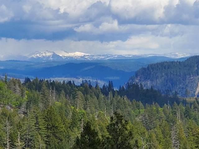 3285 Sanctuary Trail, Placerville, CA 95667 (#221063116) :: Rapisarda Real Estate