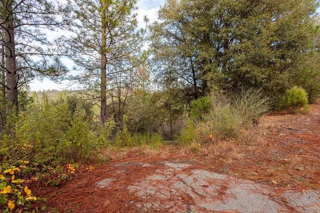 14141 Shake Ridge Road, Sutter Creek, CA 95685 (MLS #221063957) :: Heather Barrios