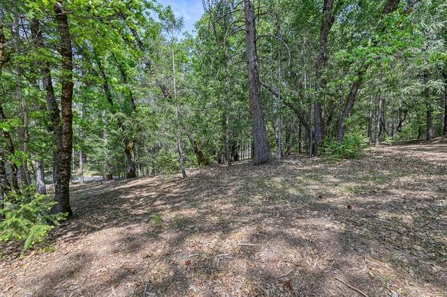1 Forest Lake Place, Weimar, CA 95736 (MLS #221064531) :: Heather Barrios