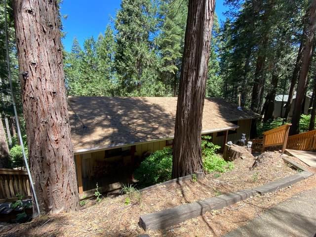 3463 Jade Drive, Pollock Pines, CA 95726 (MLS #221065196) :: Heather Barrios