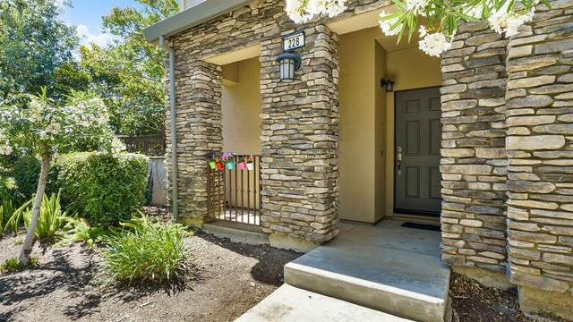 228 S Veracruz Place, Mountain House, CA 95391 (MLS #221065230) :: 3 Step Realty Group
