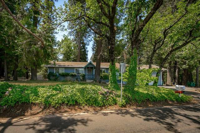 3140 Carson Rd, Placerville, CA 95667 (MLS #221065260) :: eXp Realty of California Inc