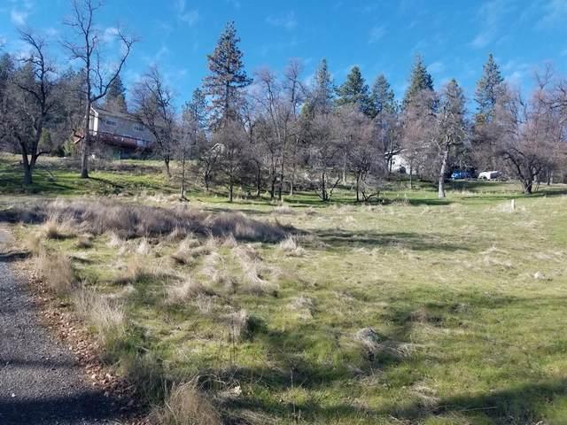 27274 Forest Oak Road, Pioneer, CA 95666 (MLS #221065699) :: Heather Barrios