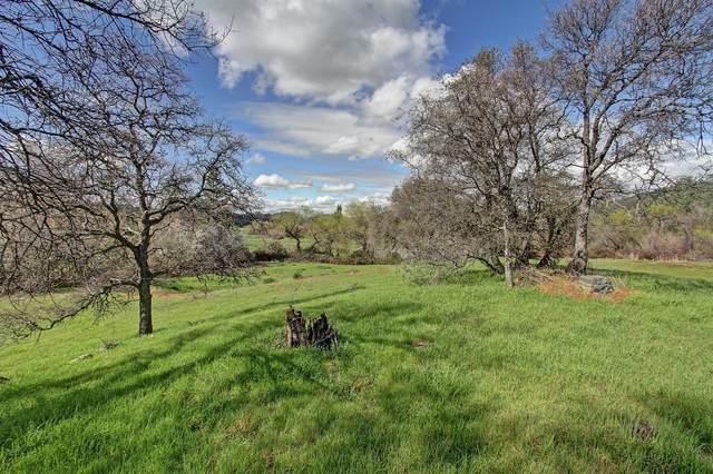 6535 Curtola Ranch Road, Auburn, CA 95602 (MLS #221065727) :: REMAX Executive