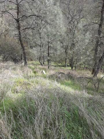 2960 Granite Springs, Coulterville, CA 95311 (MLS #221065735) :: Keller Williams - The Rachel Adams Lee Group