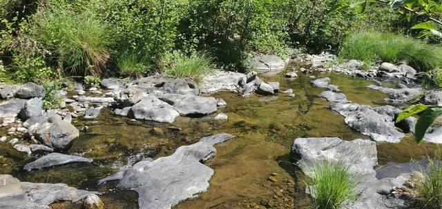 16765 Sutter Creek, Sutter Creek, CA 95685 (MLS #221066172) :: Heather Barrios