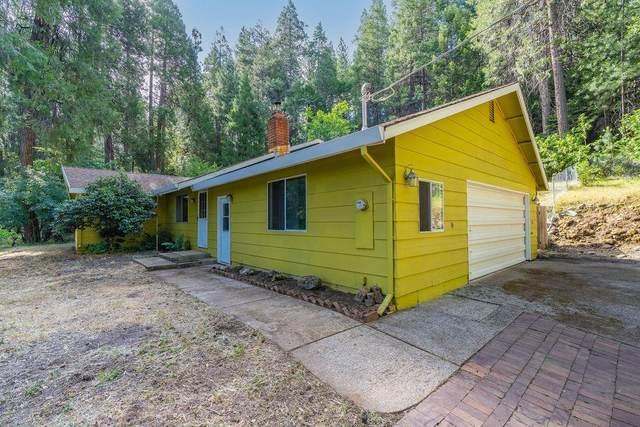 14882 Old Emigrant Road, Pioneer, CA 95666 (MLS #221066474) :: Keller Williams Realty