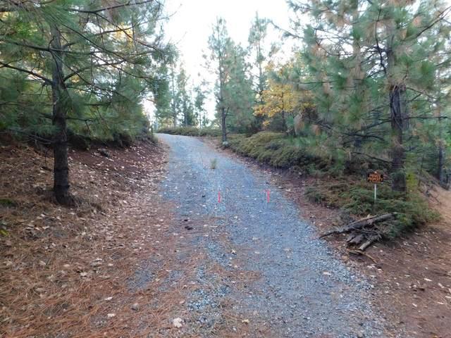 1050 Old Road, West Point, CA 95255 (MLS #221066568) :: Keller Williams Realty
