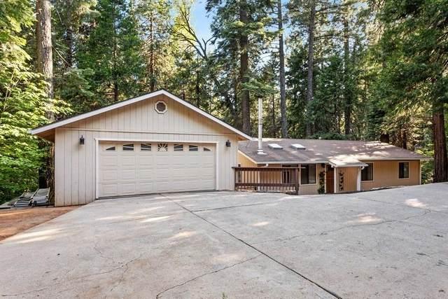 6521 Onyx Trail, Pollock Pines, CA 95726 (MLS #221066891) :: Deb Brittan Team