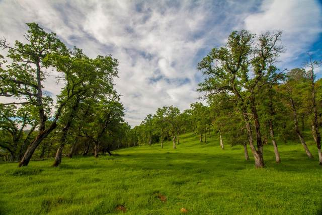 6 Dutch Flat Trail, Smartsville, CA 95977 (MLS #221067617) :: Deb Brittan Team