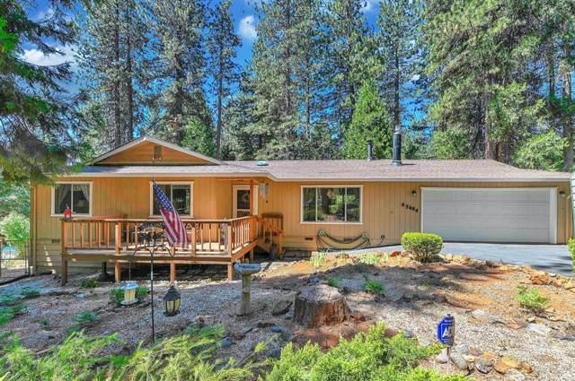 27004 Meadowmont Drive, Pioneer, CA 95666 (MLS #221067761) :: Keller Williams Realty