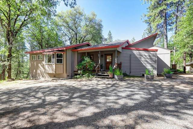 13870 Raccoon Mountain Road, Grass Valley, CA 95945 (MLS #221068162) :: 3 Step Realty Group