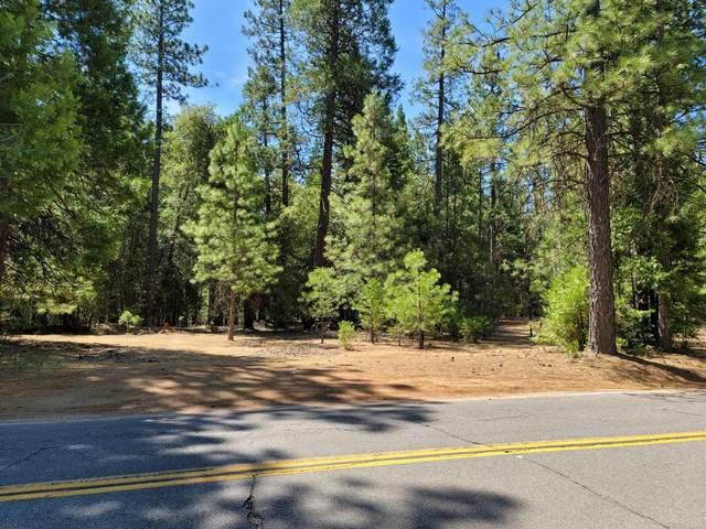 23790 Shake Ridge Road, Volcano, CA 95689 (MLS #221068891) :: 3 Step Realty Group