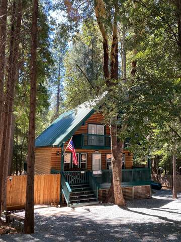 11316 Holiday Drive, Clipper Mills, CA 95930 (MLS #221069196) :: Live Play Real Estate | Sacramento