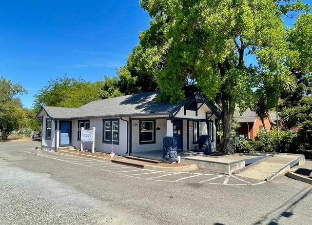 234 Donner Avenue, Roseville, CA 95678 (#221069397) :: Rapisarda Real Estate