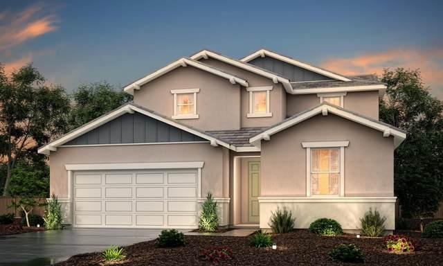 2627 Blue Sedge Street, Manteca, CA 95337 (MLS #221069600) :: 3 Step Realty Group