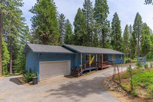 19317 Woodridge Drive, Pioneer, CA 95666 (MLS #221069871) :: Heather Barrios
