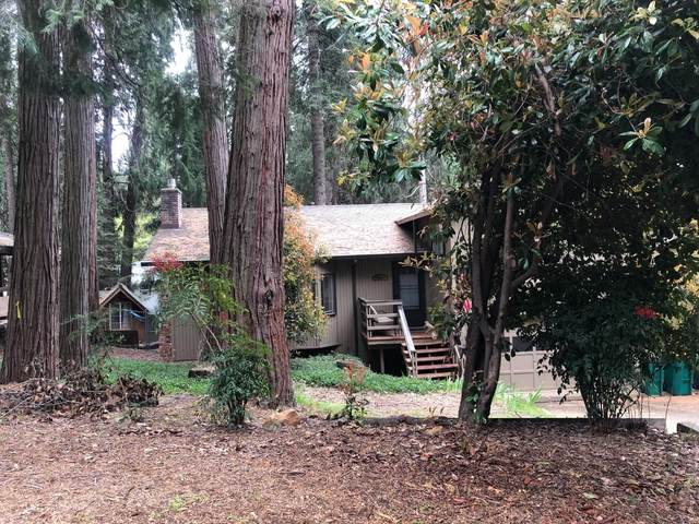 5496 Karl Court, Pollock Pines, CA 95726 (MLS #221070006) :: Heather Barrios