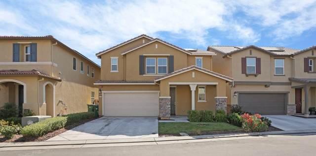 10708 Tovanella Way, Stockton, CA 95209 (MLS #221070501) :: Dominic Brandon and Team