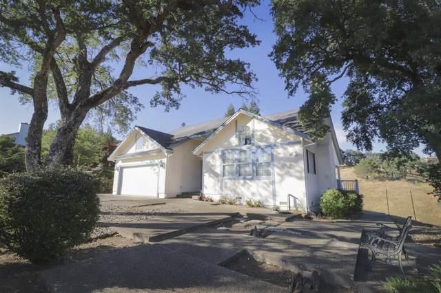 156 Creek View Court, Sutter Creek, CA 95685 (#221071013) :: Rapisarda Real Estate