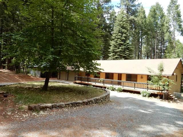 2391 Old Blair Mill Road, Pollock Pines, CA 95726 (MLS #221071099) :: Heather Barrios