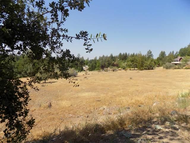 404 Buckthorn Drive, Murphys, CA 95247 (MLS #221071229) :: Heather Barrios