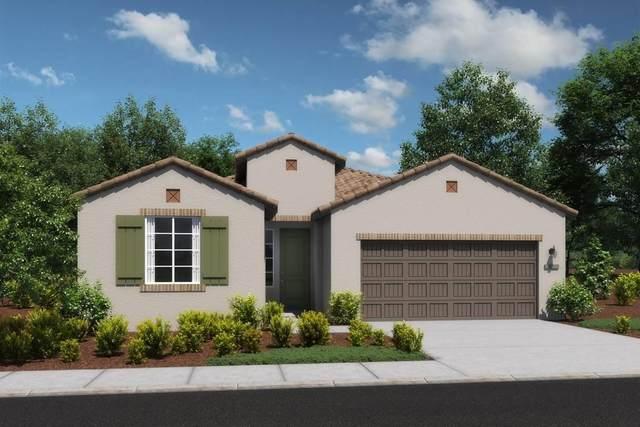 1728 Bonnard Way, Lodi, CA 95242 (MLS #221071336) :: The Merlino Home Team